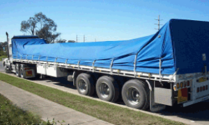 tarpaulins for sale